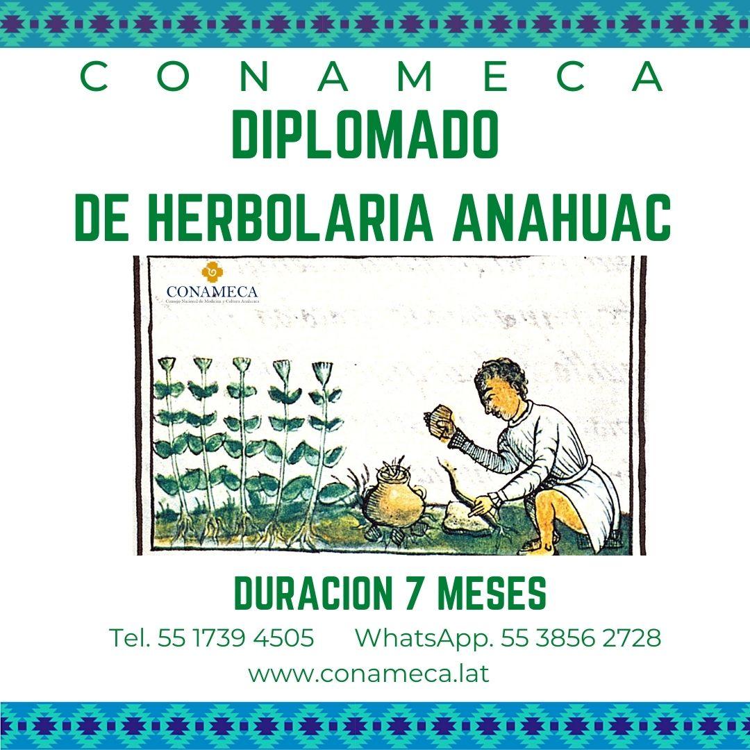 Herbolaría Anahuac