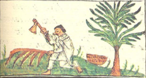 Recetario-medicinal-azteca